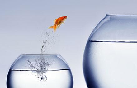 Quand faut-il penser à changer d'entreprise ?