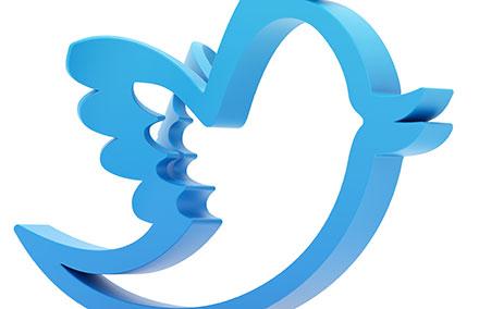 Twitter : un allié pourla recherche d'emploi